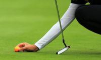 გოლფის მოედანი სასამართლომ დააჯარიმა