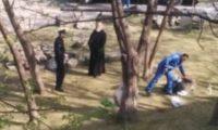 ვერის ბაღში მამაკაცმა ცხვარი დაკლა