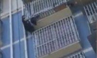 კაცმა 2 წლის ბავშვი მე-5 სართულიდან გადავარდნისგან გადაარჩინა – ვიდეო