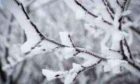 საქართველოში თოვლი და ამინდის მკვეთრი გაუარესებაა მოსალოდნელი – უახლოესი დღეების პროგნოზი