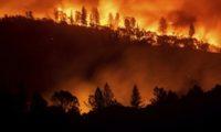 კალიფორნიაში ხანძრის შედეგად დაღუპულთა რიცხვი 71-მდე გაიზარდა, 1000 ადამიანი დაკარგულად ითვლება
