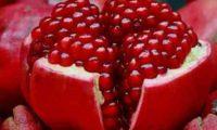 ბროწეული – ხილი, რომლის ცდუნებას ქალღმერთმა პერსეფონემ ვერ გაუძლო