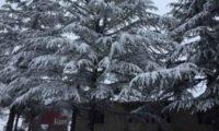 საქართველოს მაღალმთიანეთში მოთოვა