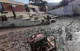 გორში ხე სახლს დაეცა - სტიქიამ მუნიციპალიტეტი დააზიანა
