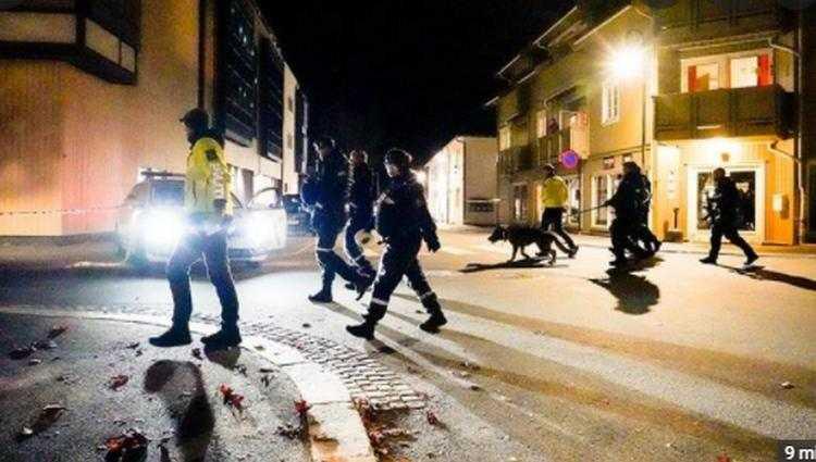 ნორვეგიაში მამაკაცმა მშვილდ-ისრით რამდენიმე კაცი მოკლა